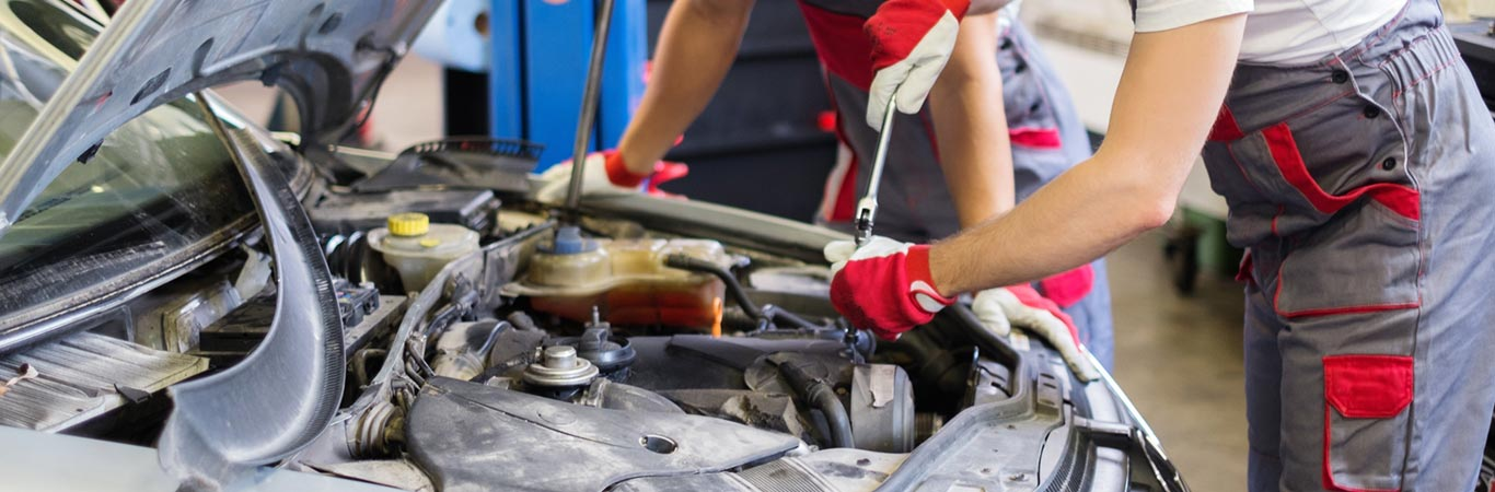 Automotive repair and maintenance services in Wood Dale, IL